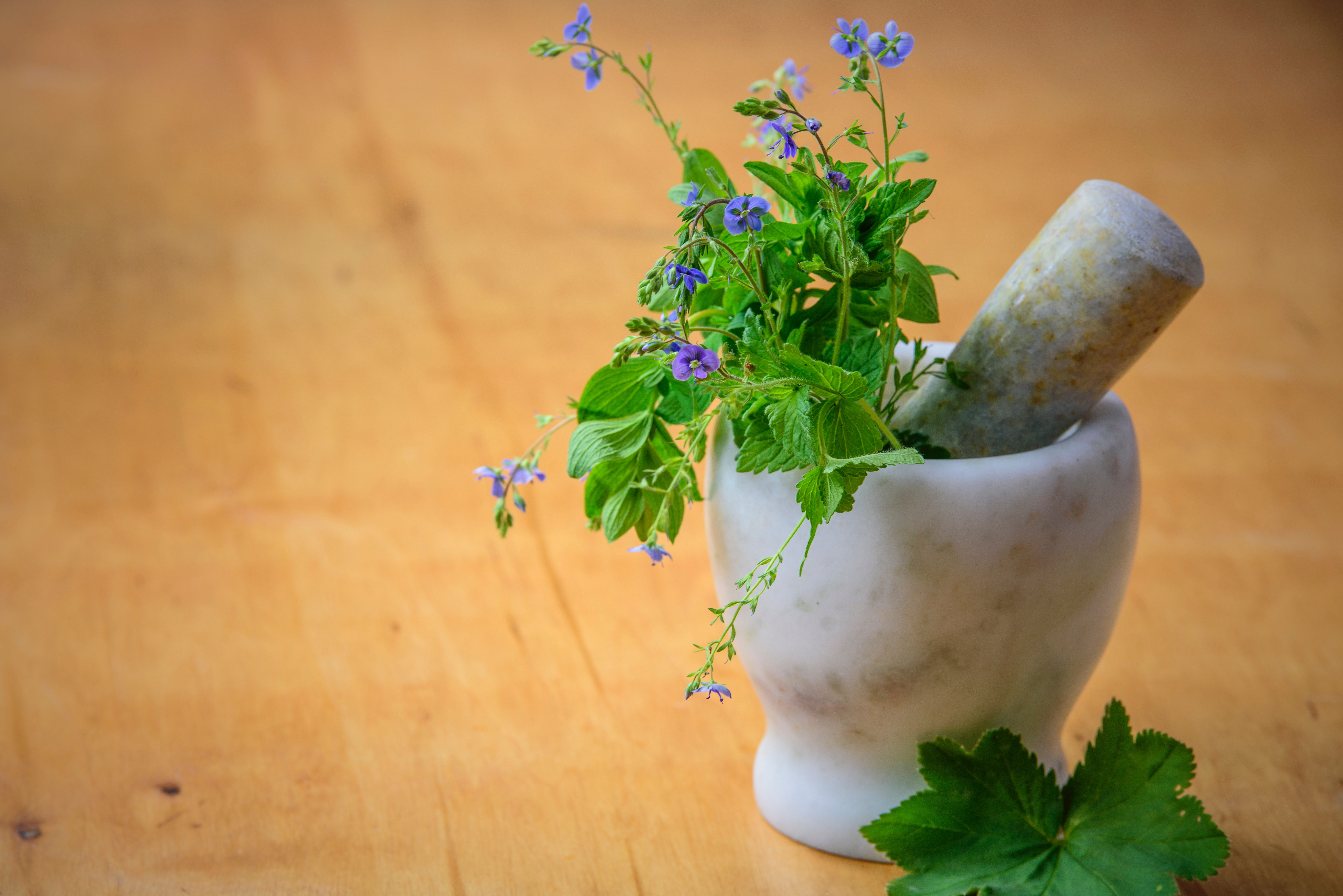 Wellness Wednesdays: Avenues in Complementary & Alternative Medicine